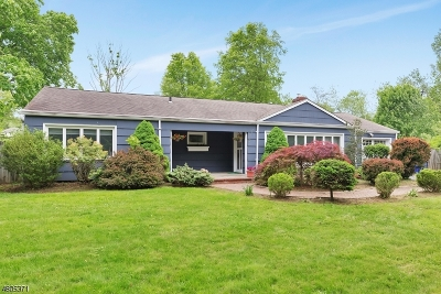 Bernards Twp., Bernardsville Boro Single Family Home For Sale: 393 Mount Airy Rd