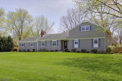 Bernards Twp. Single Family Home For Sale: 37 Gold Blvd