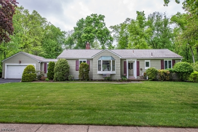 West Caldwell Twp. Single Family Home For Sale: 187 Smull Ave