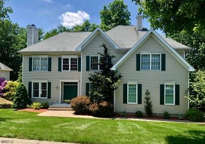 Wayne Twp. Single Family Home For Sale: 10 Almadera Dr