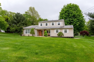 Randolph Twp. Single Family Home For Sale: 93 Randolph Ave