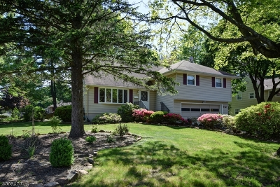 Westfield Town Single Family Home For Sale: 442 Otisco Dr