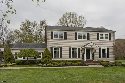 Mendham Boro NJ Single Family Home For Sale: $699,990