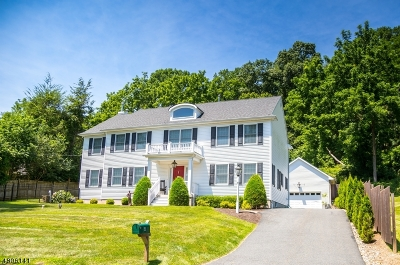 Mendham Boro, Mendham Twp. Single Family Home For Sale: 4 Cold Hill Rd