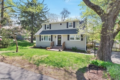 New Providence Single Family Home For Sale: 63 Division Ave
