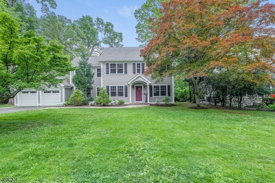 Mountainside Single Family Home For Sale: 1413 Whippoorwill Way