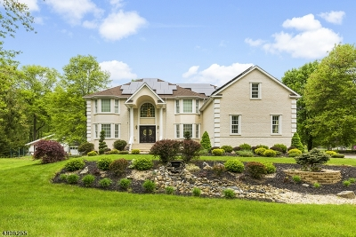 Roxbury Twp. Single Family Home For Sale: 159 Berkshire Valley Rd