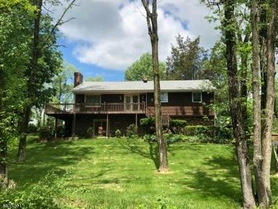 Readington Twp. Single Family Home For Sale: 635 Old York Rd