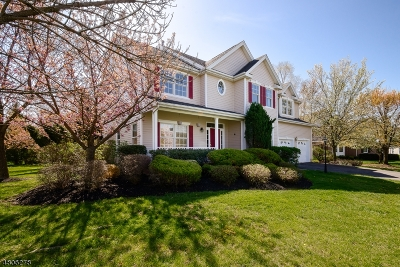Montgomery Twp. NJ Rental For Rent: $5,000