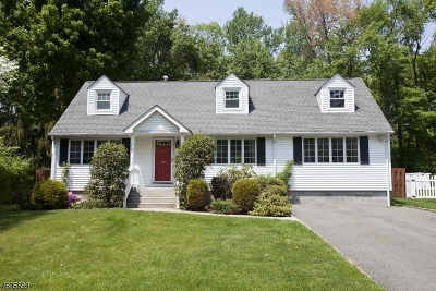 Florham Park Boro Single Family Home For Sale: 6 Willow Way
