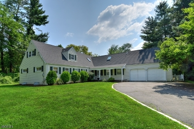 Chatham Twp. NJ Single Family Home For Sale: $1,150,000