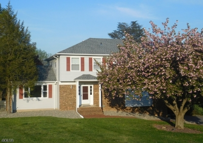 Branchburg Twp. Single Family Home For Sale: 966 Evergreen Dr