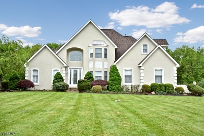 Readington Twp. Single Family Home For Sale: 129 Ivy Ct