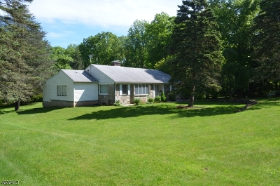 Berkeley Heights Single Family Home For Sale: 1039 Mountain Ave