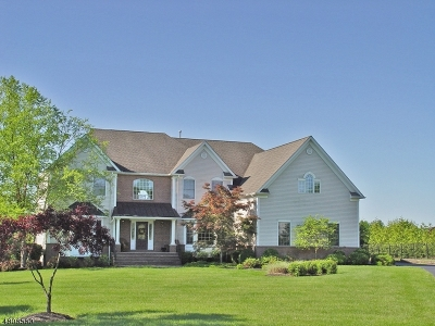 Raritan Twp. Single Family Home For Sale: 6 Hoagland Way