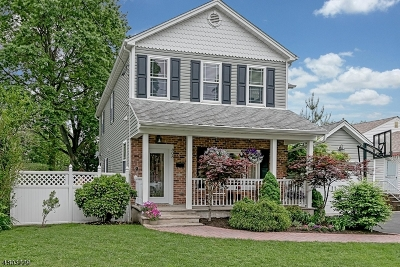 Westfield Town Single Family Home For Sale: 808 Grant Avenue