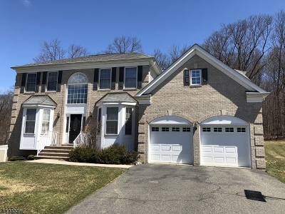 Mount Olive Twp. NJ Single Family Home For Sale: $535,000