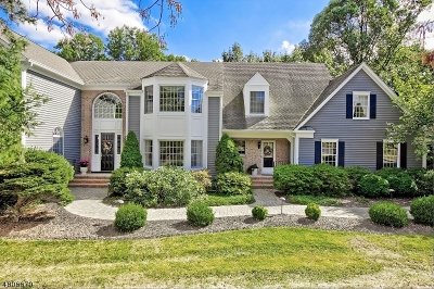 Chester Twp. NJ Single Family Home For Sale: $899,900