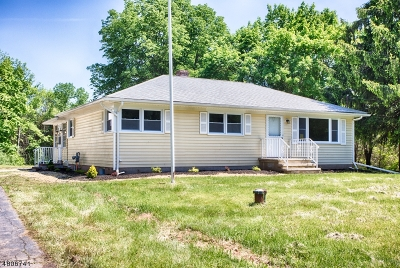 Readington Twp. Single Family Home For Sale: 32 Ridge Rd