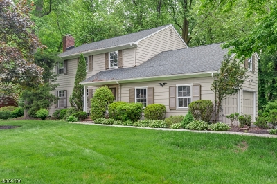 Mountainside Single Family Home For Sale: 284 Bridle Path