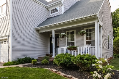 Readington Twp. Single Family Home For Sale: 14 Hay Barrick Rd