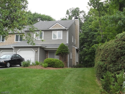 Parsippany Condo/Townhouse For Sale: 172 Patriots Rd
