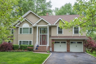 Berkeley Heights Single Family Home For Sale: 195 Chaucer Dr