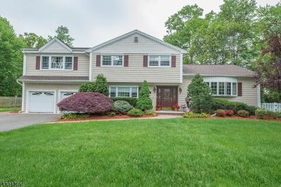 Wayne Twp. Single Family Home For Sale: 60 Lenox Rd