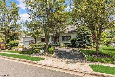Edison Twp. Single Family Home For Sale: 19 Pavlocak Ct