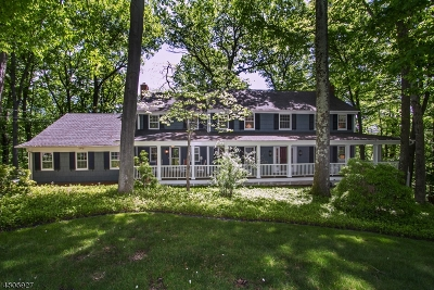 Mendham Boro, Mendham Twp. Single Family Home For Sale: 9 Summit Rd