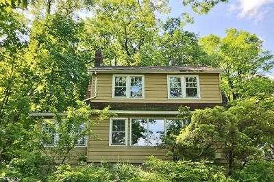 Basking Ridge Single Family Home For Sale: 246 Lyons Rd