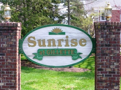 Long Hill Twp Condo/Townhouse For Sale: 12 Sunrise Dr #12