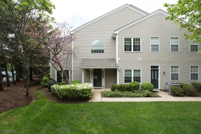 Bedminster Twp. NJ Condo/Townhouse For Sale: $499,000