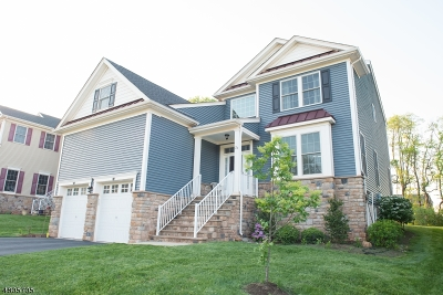 Montgomery Twp. Single Family Home For Sale: 21 Mystic Dr