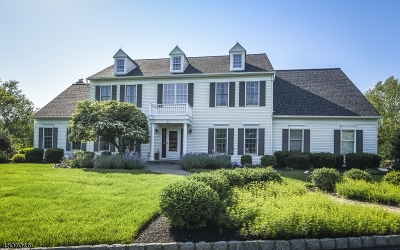Montgomery Twp. Single Family Home For Sale: 62 Doyle Ln