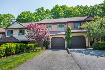 Parsippany Condo/Townhouse For Sale: 120 Patriots Rd