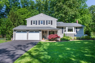 Parsippany Single Family Home For Sale: 35 Tarn Dr