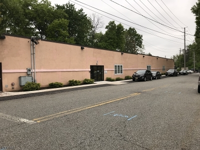 Roselle Park Boro Commercial For Sale: 258 W Webster Ave