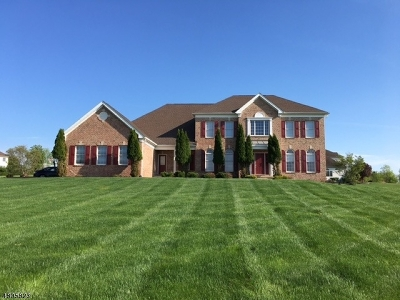 Raritan Twp. Single Family Home For Sale: 4 Ballentine Ct
