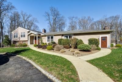 Far Hills Boro NJ Rental For Rent: $6,000