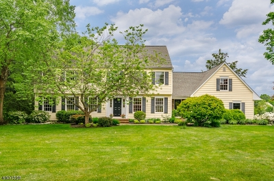 Montgomery Twp. Single Family Home For Sale: 18 Williamsburg Ct