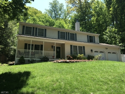 Roxbury Twp. Single Family Home For Sale: 18 Mohican Ave