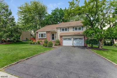 Westfield Town Single Family Home For Sale: 47 Unami Terrace