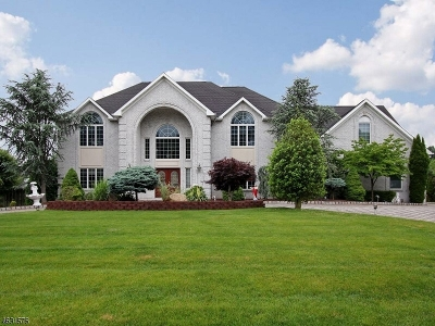 Scotch Plains Twp. Single Family Home For Sale: 33 Winchester Dr