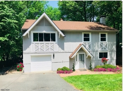 Roxbury Twp. Single Family Home For Sale: 37 Condict Rd