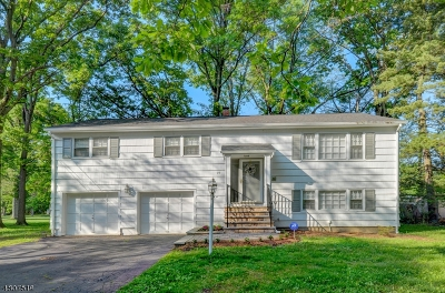 Florham Park Boro Single Family Home For Sale: 19 Kenneth Ct