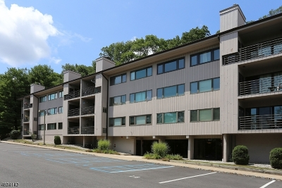 Morristown Town Condo/Townhouse For Sale: 41 Mount Kemble Ave, 406 #406