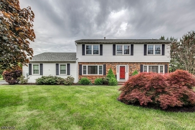 Franklin Twp. Single Family Home For Sale: 9 Nepote Pl