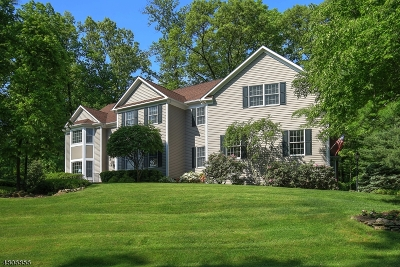 Somerset County Single Family Home For Sale: 6 Laurelwood, Dr