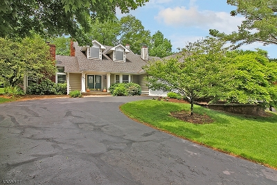 Bedminster Twp. NJ Single Family Home For Sale: $979,000